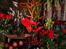 Creatively unique, by stalks & stems - Passionate reds